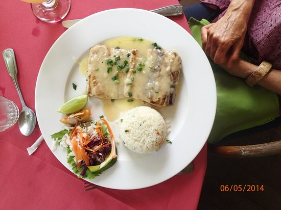 The Pink Plantation House : The Mahi Mahi