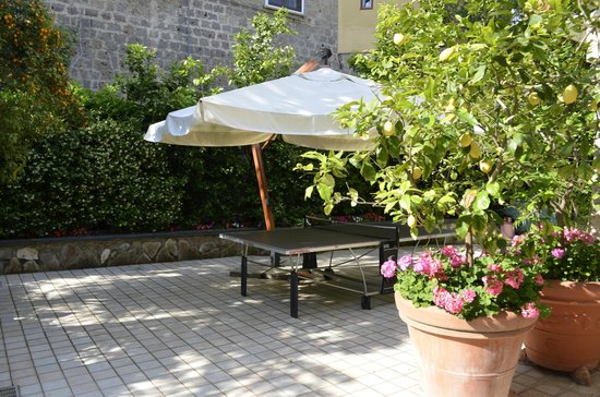 Villa La Contessina : lemon trees and table tennis