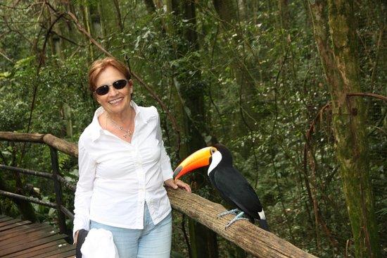 Belmond Hotel das Cataratas: Fare amicizia con il tucano