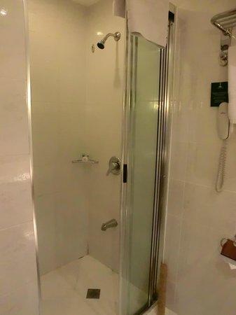 City Garden Hotel Makati: Shower
