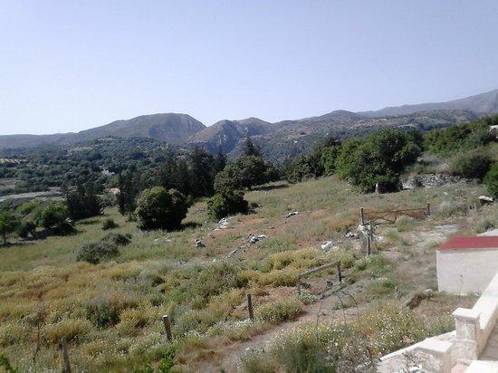 Zouridi Villa Park: Вид с терассы