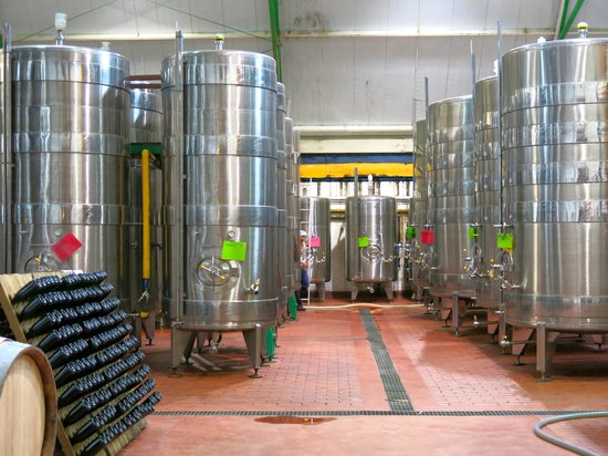 Greatest Africa Private Wine Day Tours : Most modern technology @ Klein & Constantia Estate