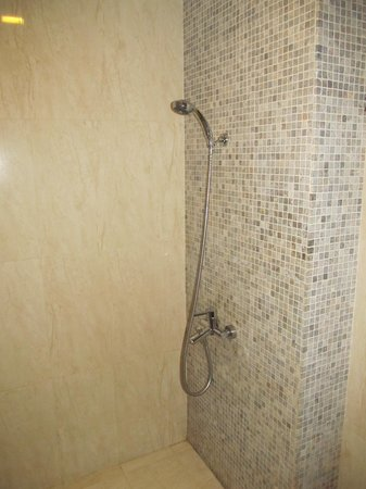 Long Anh Hotel: Good powerful shower