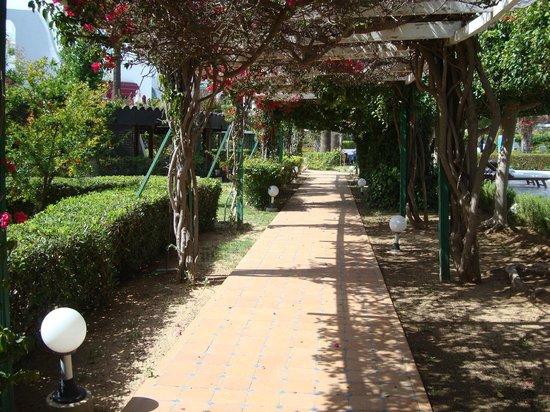 Hasdrubal Thalassa Hotel & Spa Port El Kantaoui: L'accès à la plage