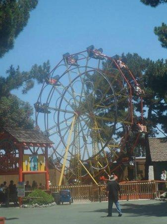 Knott's Berry Farm: Ferris Wheel