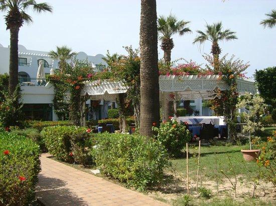Hasdrubal Thalassa Hotel & Spa Port El Kantaoui: Les jardins fleuris