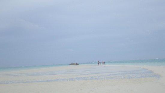 One Foot Island: Walking back to the boat on sandbar