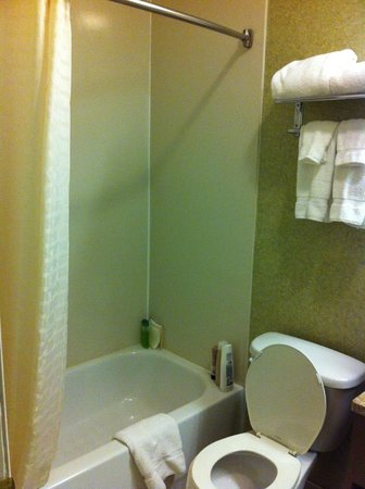 The Hotel at Times Square: Baño