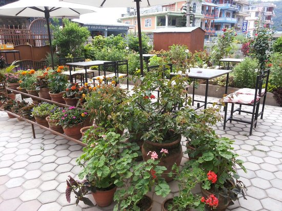 Hotel Orchid: Hotel front garden