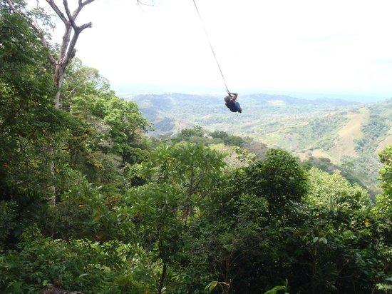 Osa Canopy Tour: Det så kallade