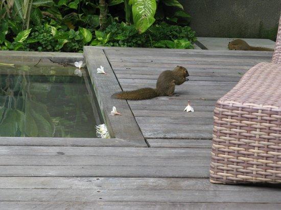 Bali Mandira Beach Resort & Spa: Friendly locals
