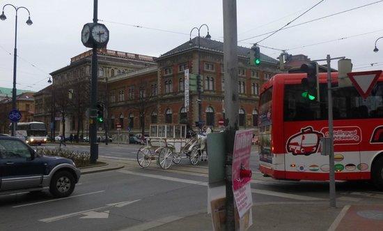 Historisches Zentrum von Wien: 30. Карета на улице Вены.