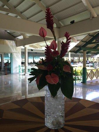 Iberostar Dominicana Hotel : recepção