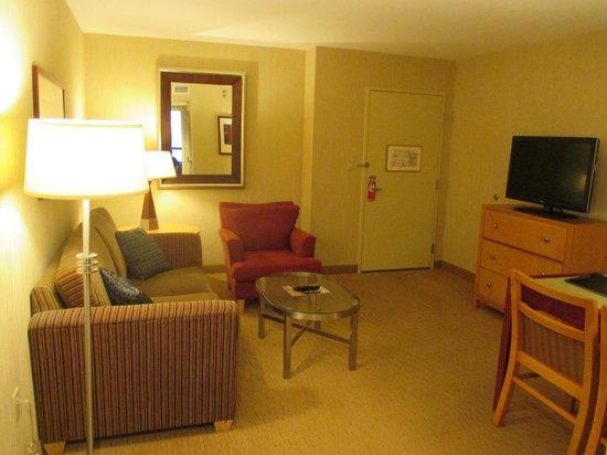 Embassy Suites by Hilton Washington-Convention Center : Premium Suite