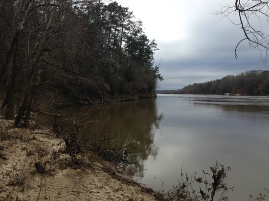 Torreya State Park: Apalachicola River
