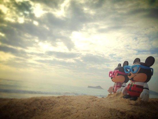 Oahu Photography Tours : Mickey Travel Companions