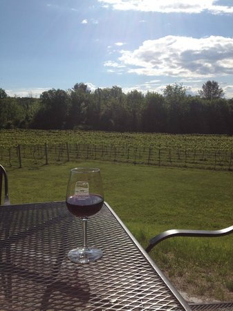 Shelburne Vineyard: Drink, food, and the outside