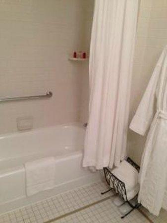 Castle Hotel & Spa: old bathtub