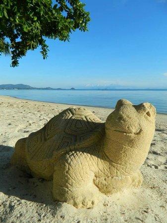 Mövenpick Resort Laem Yai Beach Samui : The favorite!