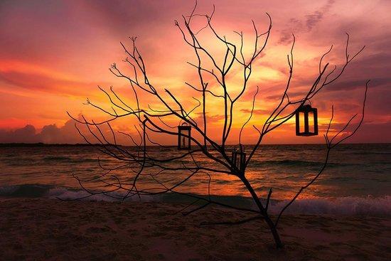 Soneva Fushi: Sunset
