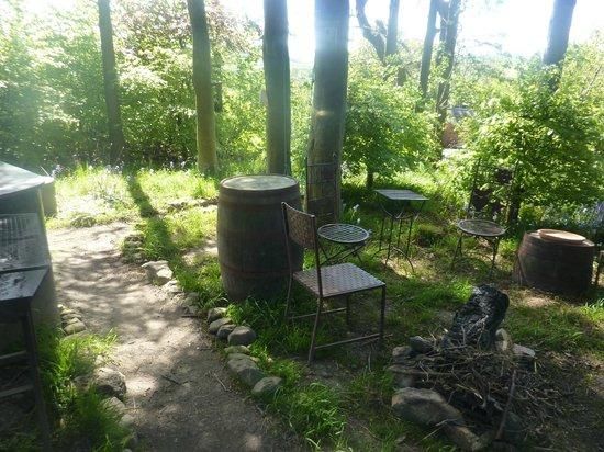 Tarset Tor Backpackers: Woodland Bar