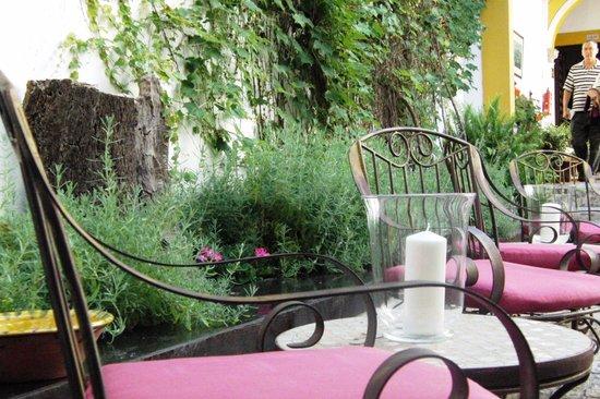 Hotel Casa Imperial: um dos jardins