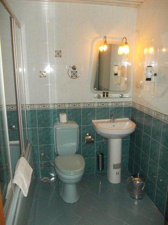 Bozdogan Otel : Bathroom