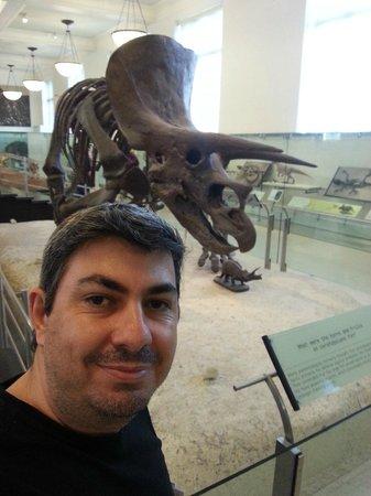 American Museum of Natural History: Museu de História Natural - Manhattan NY