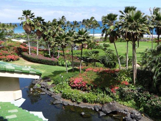 Grand Hyatt Kauai Resort & Spa : View from our room