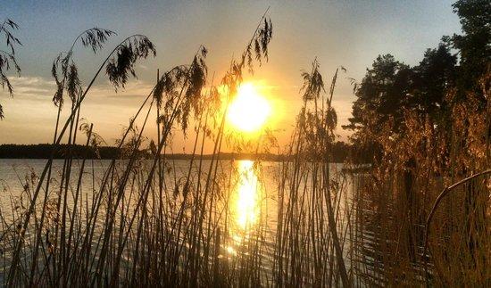 Norraengens Alpacka - Bed and Breakfast: Sunset