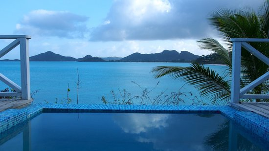 Cocobay Resort : Plunge pool with sea view