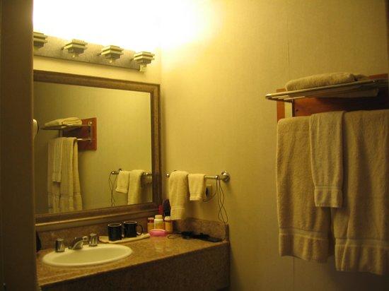 Bodega Coast Inn & Suites: Nice Big bathroom