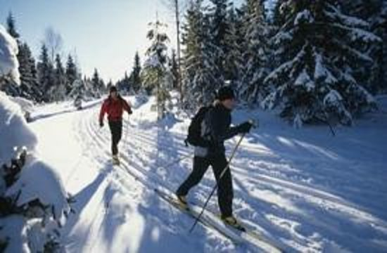 Les Aventuriers de Charlo : Cross country skiing