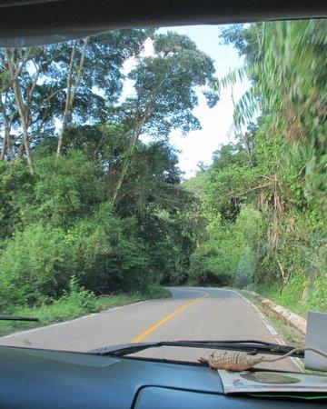 Cascadas de Misol-Ha : Cascadas de Misón-Ha, Chiapas, México