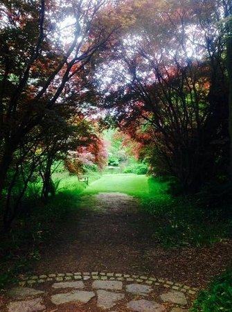 Mount Usher Gardens: le parc