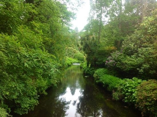 Mount Usher Gardens: la riviere