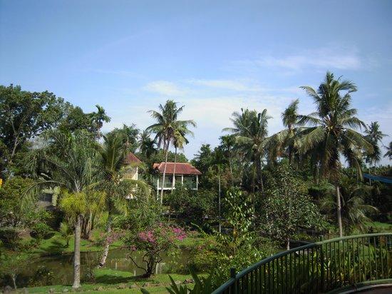 Hotel Deli River: Ausblick vom Frühstücksbereich
