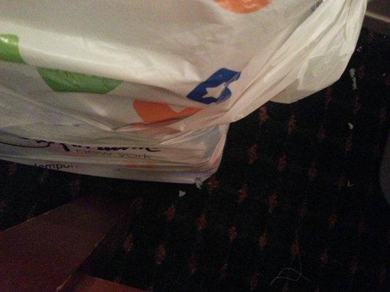 Travel Inn Hotel New York: Migalhas de saco plástico pelo rato - Travel Inn - Manhattan - NY