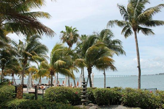 Mandarin Oriental, Miami: Пляж отеля