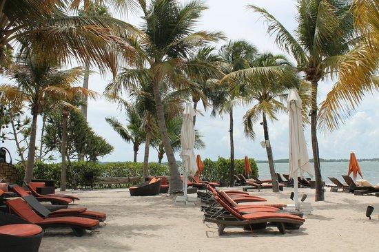 Mandarin Oriental, Miami: Пляжный клуб отеля