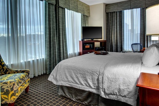 Hampton Inn & Suites Greenville - Downtown - Riverplace: King RiverView Room