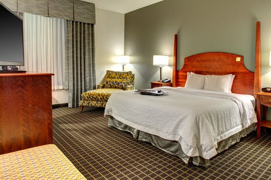 Hampton Inn & Suites Greenville - Downtown - Riverplace: King Standard