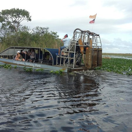 Everglades Holiday Park : love the really low sides of the airboat - great viewing
