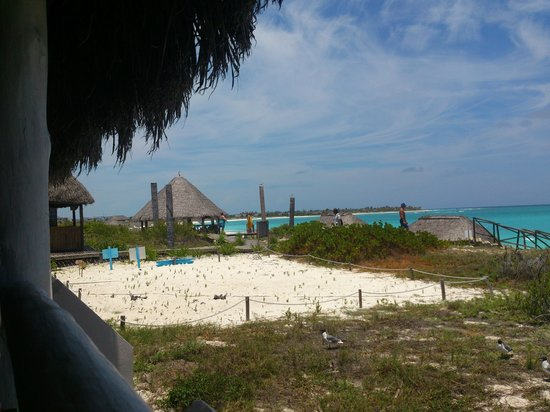 Sol Cayo Largo: Vista camino a la playa