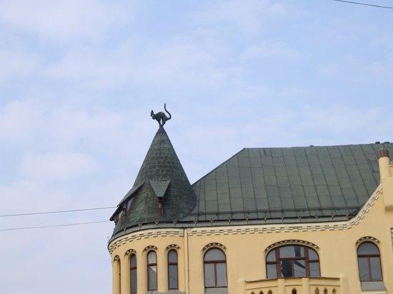 Cat House : Черная кошка - один из символов Риги.