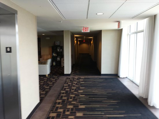 Cambria hotel & suites Miami Airport - Blue Lagoon: Corredor dos Quartos
