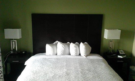 Hampton Inn & Suites Baton Rouge Downtown: Very comfortable. Enjoyed the balcony.
