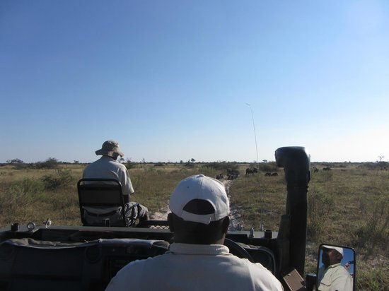 Lebala Camp - Kwando Safaris: Guide, tracker and terrain