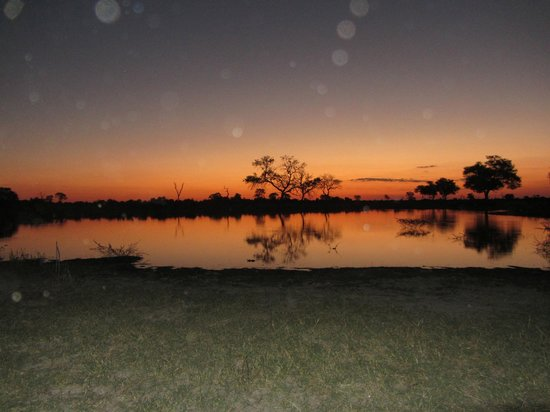 Lebala Camp - Kwando Safaris: Sunset