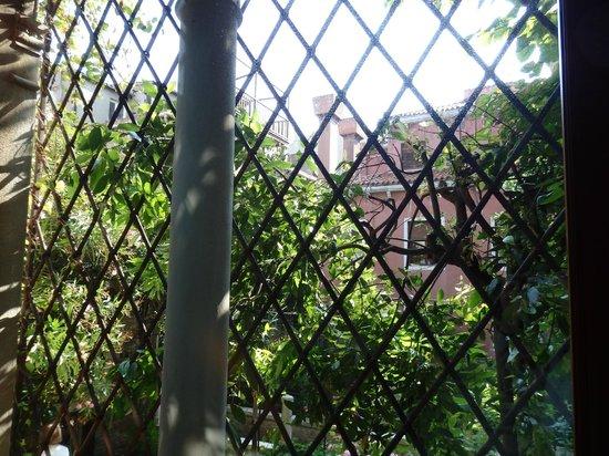 Locanda San Barnaba: vue depuis fenètre / escalier